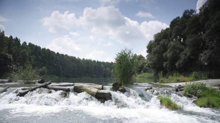 Kukkónia kincsei: a Duna ártere és a Duna-ártéri Természetvédelmi Területek